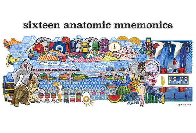 [MEDSCAPE]: 16张图便于记忆解剖结构