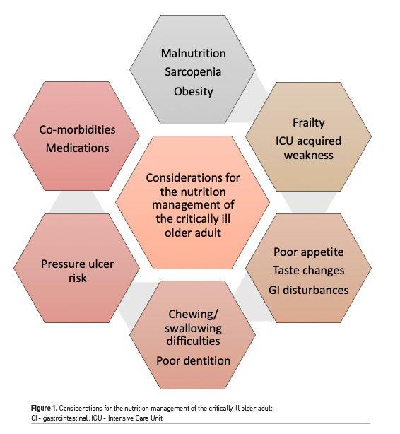 [ICU Management & Practice]: 老年危重病患者的营养支持治疗