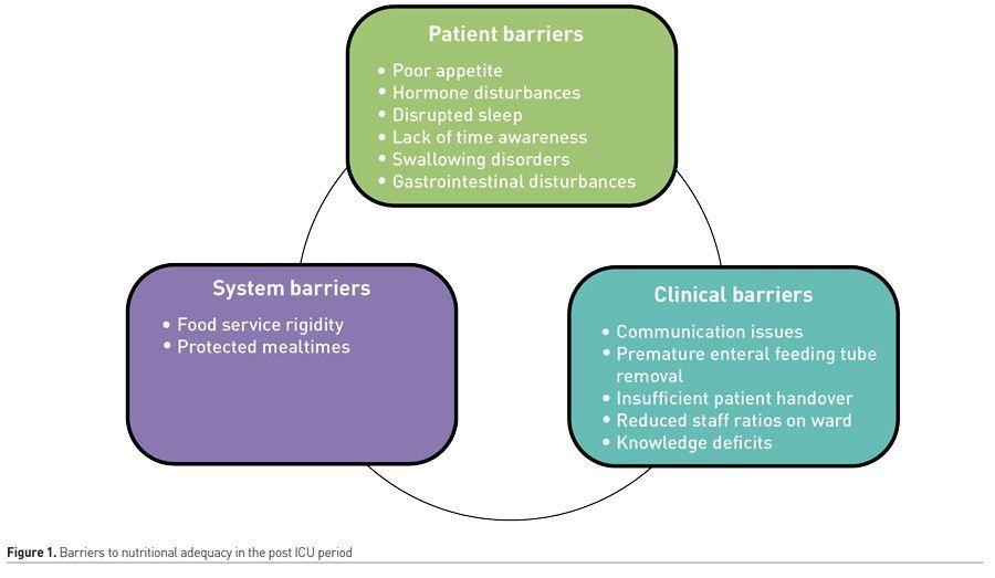 [ICU Management & Practice]: ICU后阶段的营养:证据何在?